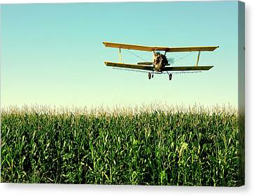 Crops Dusted Canvas Print by Todd Klassy