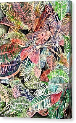 Croton Tropical Art Print Canvas Print by Derek Mccrea