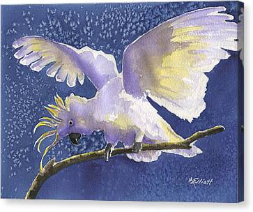 Cuckoo Cockatoo Canvas Print by Marsha Elliott
