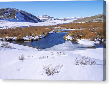 Currant Creek On Ice Canvas Print by Chad Dutson