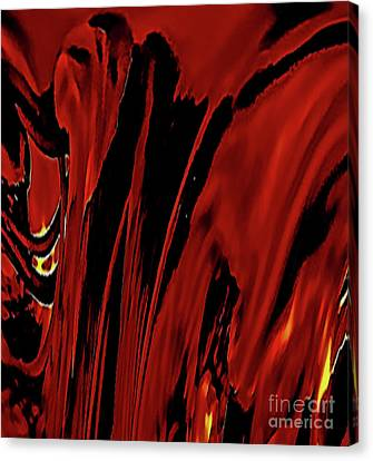 Curtain Of Desire Canvas Print by Elizabeth Tillar