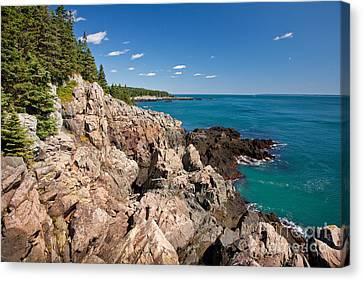 Cutler Cliffs 1 Canvas Print by Susan Cole Kelly