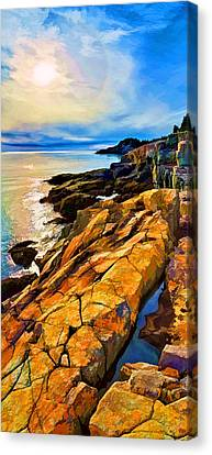 Cutler Coast Lichen Canvas Print by Bill Caldwell -        ABeautifulSky Photography