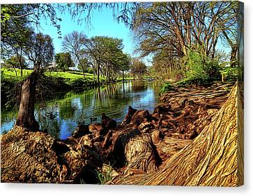 Cypress Bend Park Painted Canvas Print by Judy Vincent