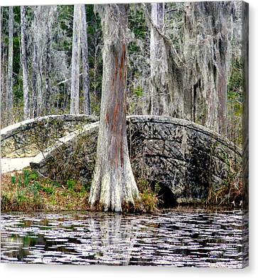 Cypress Swamp Stone Bridge Canvas Print by Elena Tudor