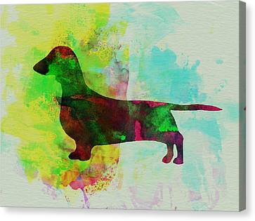 Dachshund Watercolor Canvas Print by Naxart Studio