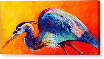 Daddy Long Legs - Great Blue Heron Canvas Print by Marion Rose