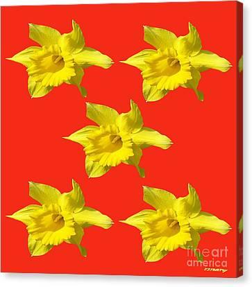 Daffodils Canvas Print by Patrick J Murphy