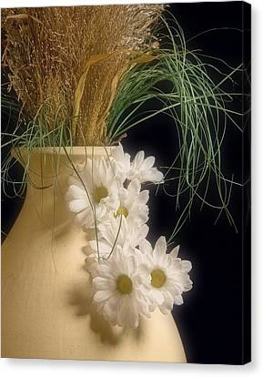 Daisies On The Side Canvas Print by Tom Mc Nemar