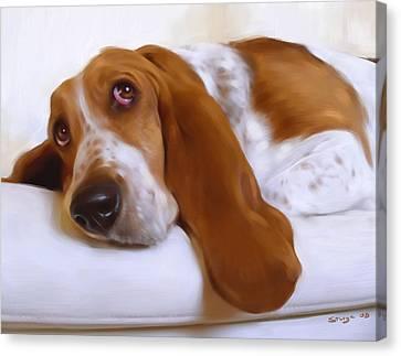 Daisy Canvas Print by Simon Sturge