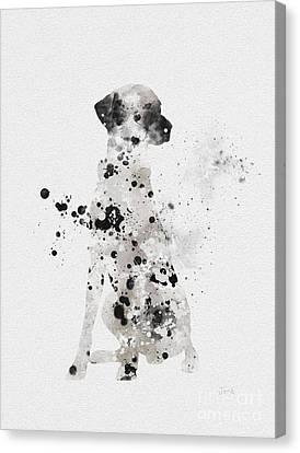 Dalmatian Canvas Print by Rebecca Jenkins