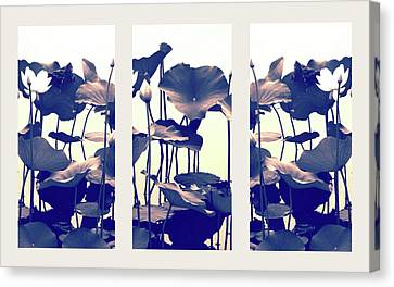 Dance Of The Lotus Triptych Canvas Print by Jessica Jenney