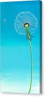 Dandelion Canvas Print by David Junod