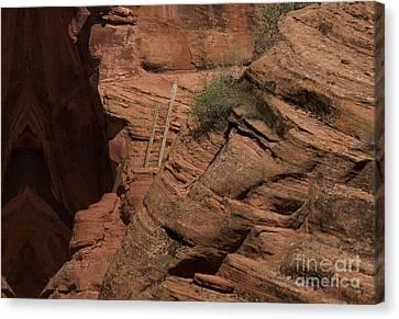 Dangerous Climb Canvas Print by Anne Rodkin