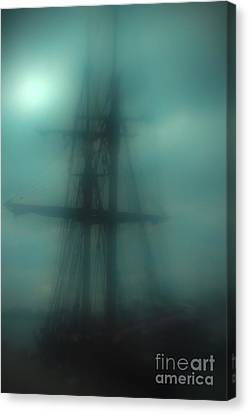 Dangerous Waters Canvas Print by Andrew Paranavitana