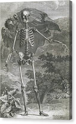 Danse Macabre, 1749 Canvas Print by Science Source