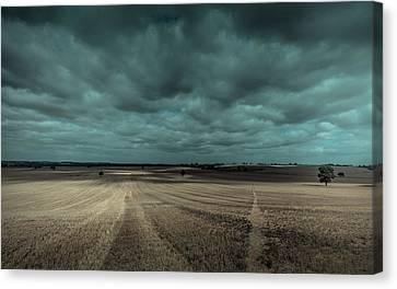 Dappled Canvas Print by Chris Fletcher