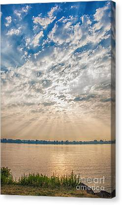 Dappled Dawn Canvas Print by Terry Rowe