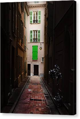 Dark And Light Canvas Print by Cecil Fuselier