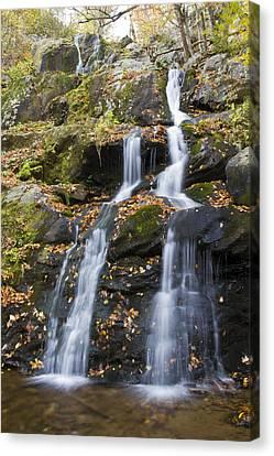 Dark Hollow Falls Shenandoah National Park Canvas Print by Pierre Leclerc Photography