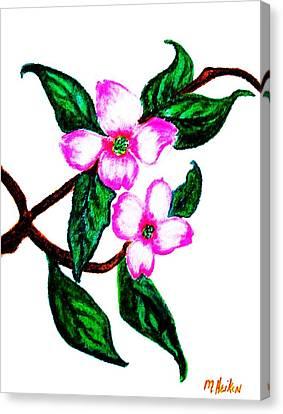 Darling Dogwood Llll Canvas Print by Marsha Heiken