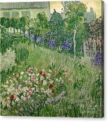 Daubigny's Garden Canvas Print by Vincent Van Gogh