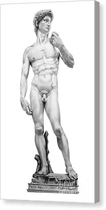 David-michelangelo Canvas Print by Murphy Elliott
