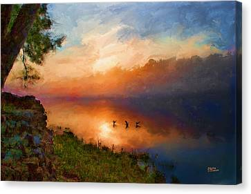 Dawn Flight Canvas Print by Shirley Dawson
