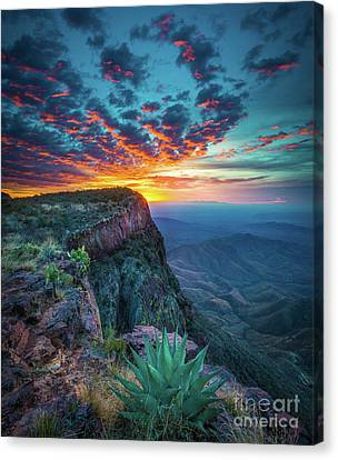 Dawn In The Chisos Canvas Print by Inge Johnsson