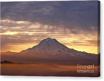 Dawn Mist About Mount Rainier Canvas Print by Sean Griffin