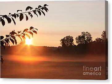 Dawn Of A Brand New Day  Canvas Print by Cathy  Beharriell