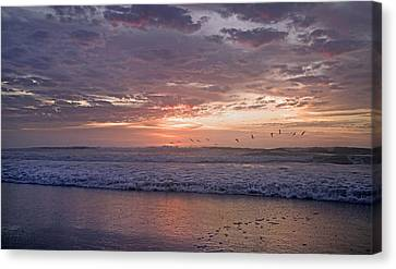 Dawn Patrol Canvas Print by Betsy C Knapp