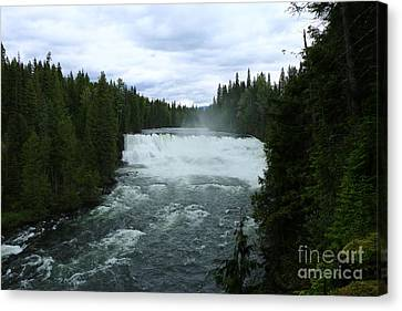 Dawson Falls Canvas Print by Christiane Schulze Art And Photography