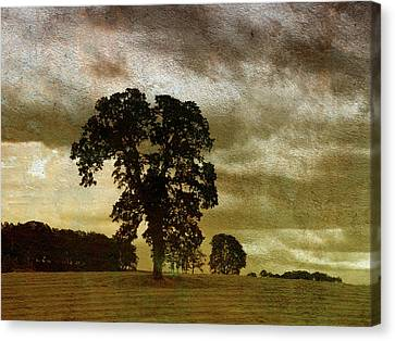 Daybreak  Canvas Print by Bonnie Bruno