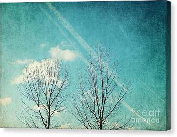 Daydreamer Canvas Print by Angela Doelling AD DESIGN Photo and PhotoArt