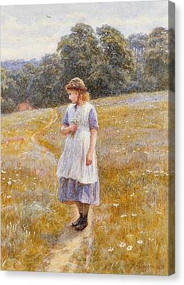 Daydreamer Canvas Print by Helen Allingham