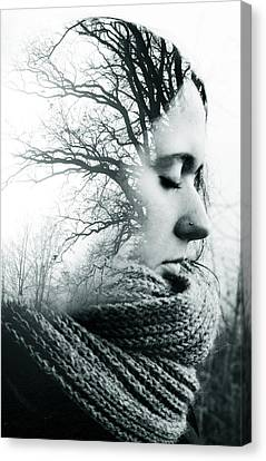 Daydreamer Canvas Print by Cambion Art