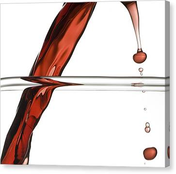 Decanting Wine Canvas Print by Frank Tschakert