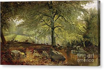 Deer In A Wood Canvas Print by Joseph Adam