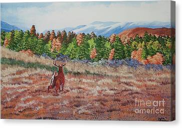 Deer In Fall Canvas Print by Charlotte Blanchard