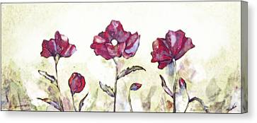Delicate Poppy I Canvas Print by Shadia Derbyshire
