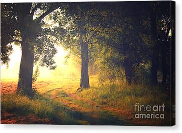 Delightful Dream Canvas Print by Mark Borbely