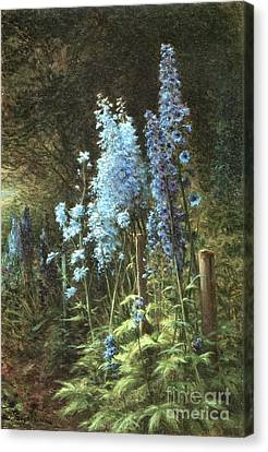 Delphiniums In A Wooded Landscape Canvas Print by MotionAge Designs