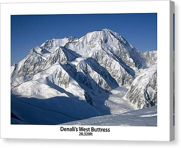Denali West Buttress Canvas Print by Alasdair Turner