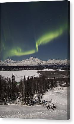 Denali Whisper Canvas Print by Ed Boudreau