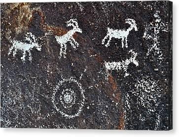 Desert Bighorn Sheep Petroglyphs Canvas Print by Kyle Hanson