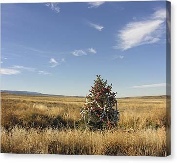 Desert Christmas Canvas Print by Dusty Demerson