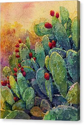 Desert Gems 2 Canvas Print by Hailey E Herrera