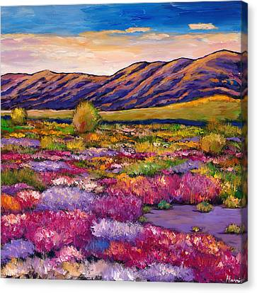 Desert In Bloom Canvas Print by Johnathan Harris