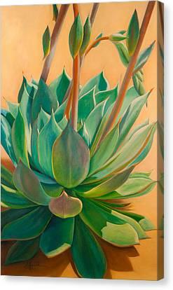 Desert Rainbow Canvas Print by Athena  Mantle
